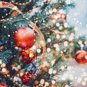 Przerwa Świąteczna!